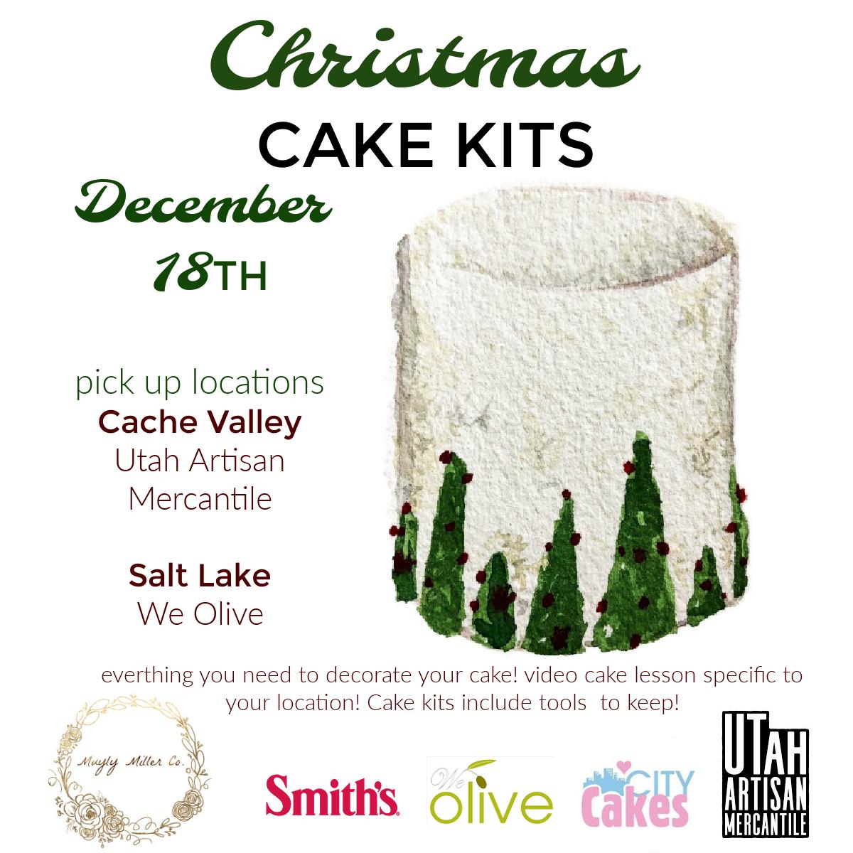Christmas Cake Kits – Foodie, Cakes + Classes